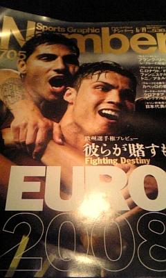 EURO 2008 <br />  優勝予想